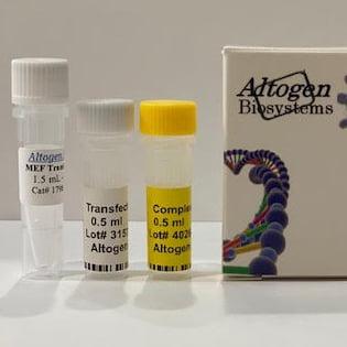 MEF Transfection Reagent
