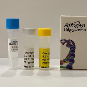 HT1080 Transfection Reagent