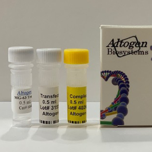 MG63 Transfection Reagent