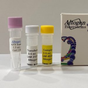 a375 Transfection Reagent