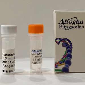 Kidney Invivo Transfection Reagent