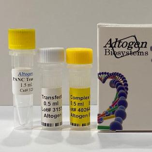 Panc Transfection Reagent