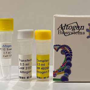 pc12 Transfection Reagent