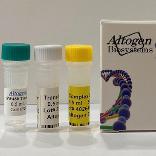 sw480 Transfection Reagent