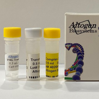 t98g Transfection Reagent